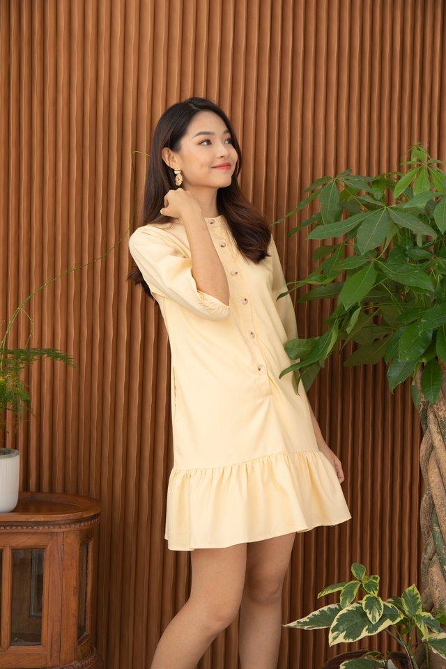 Fenya Mandarin Collar Drop Waist Dress in Macaroon